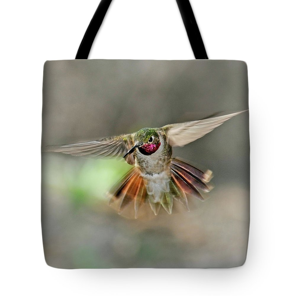Dawn Tote Bag featuring the photograph Poetry In Motion - Hummingbird Hovering by Eastman Photography Views Of The Southwest