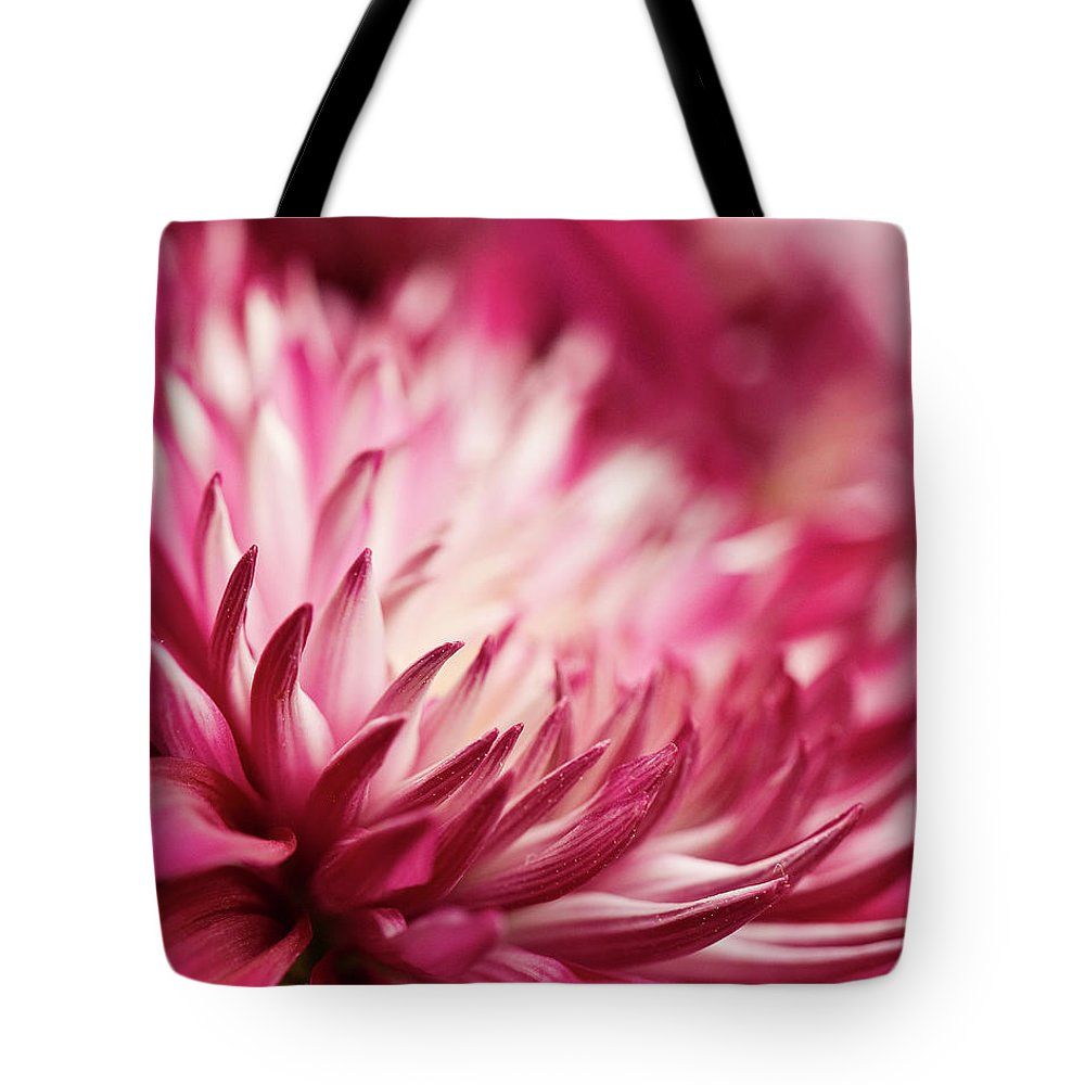 Petal Tote Bag featuring the photograph Poised Petals by Jody Trappe Photography