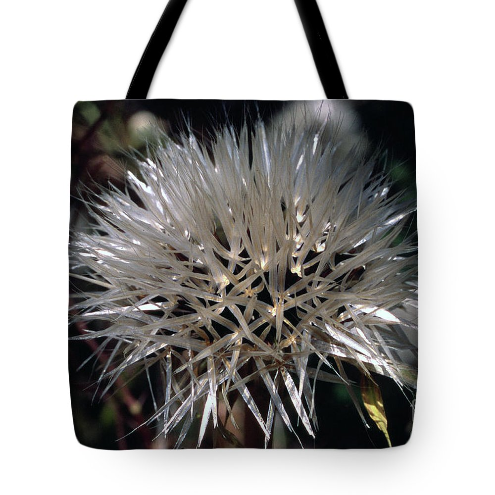 Tote Bag featuring the photograph Poof by Randy Oberg