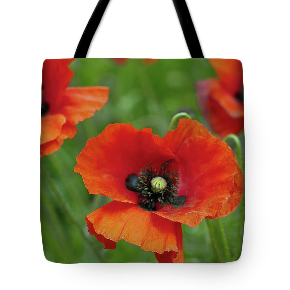 Petal Tote Bag featuring the photograph Poppies by Photo By Judepics
