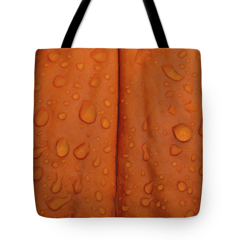 Pumpkin Tote Bag featuring the photograph Pumpkin by Michelle Wittensoldner