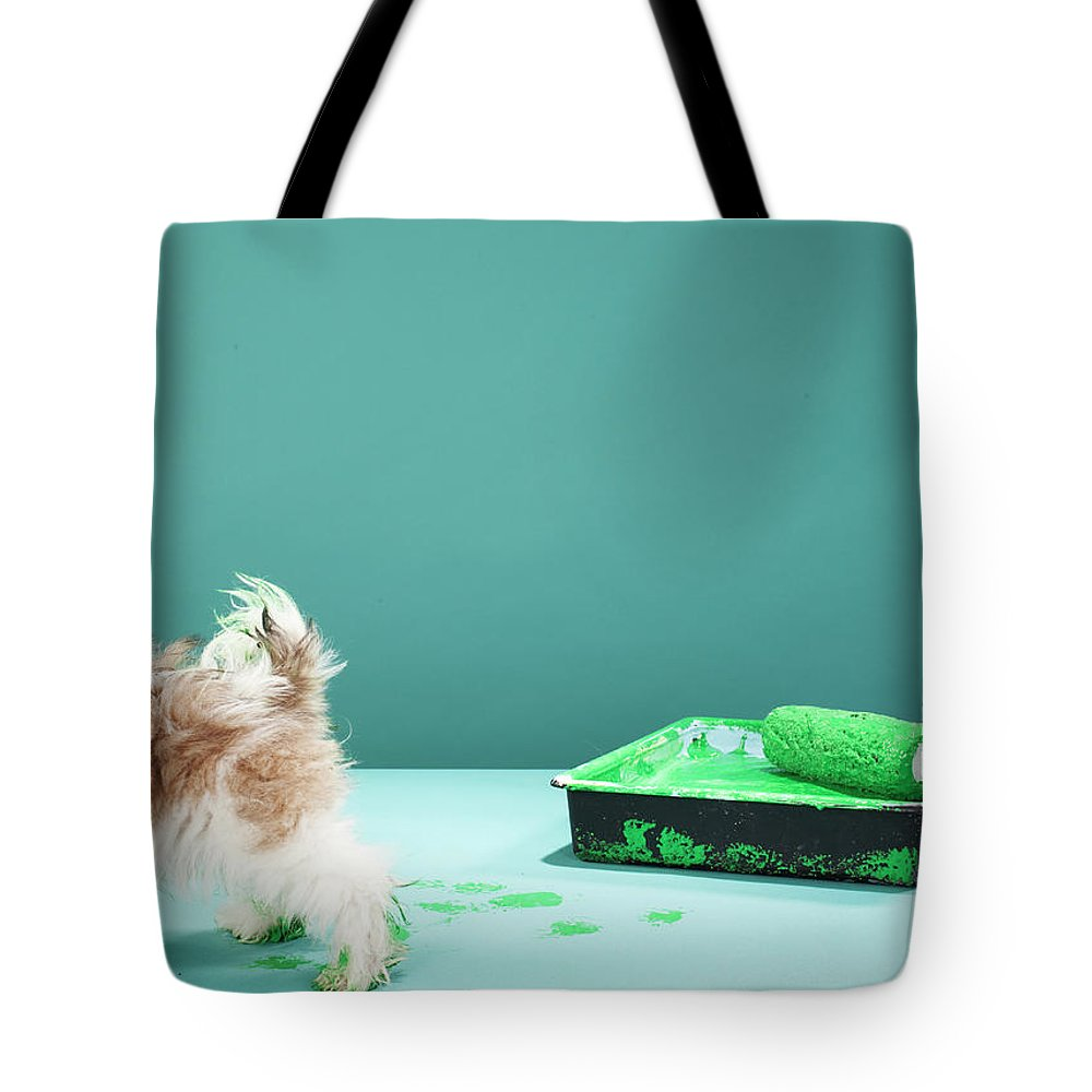 Pets Tote Bag featuring the photograph Puppy Making Green Paw Prints From by Martin Poole