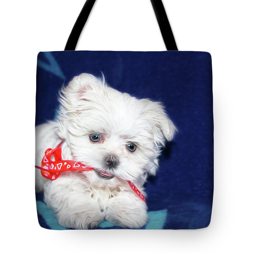 Maltese Tote Bag featuring the digital art Puppy by Tatiana Tyumeneva