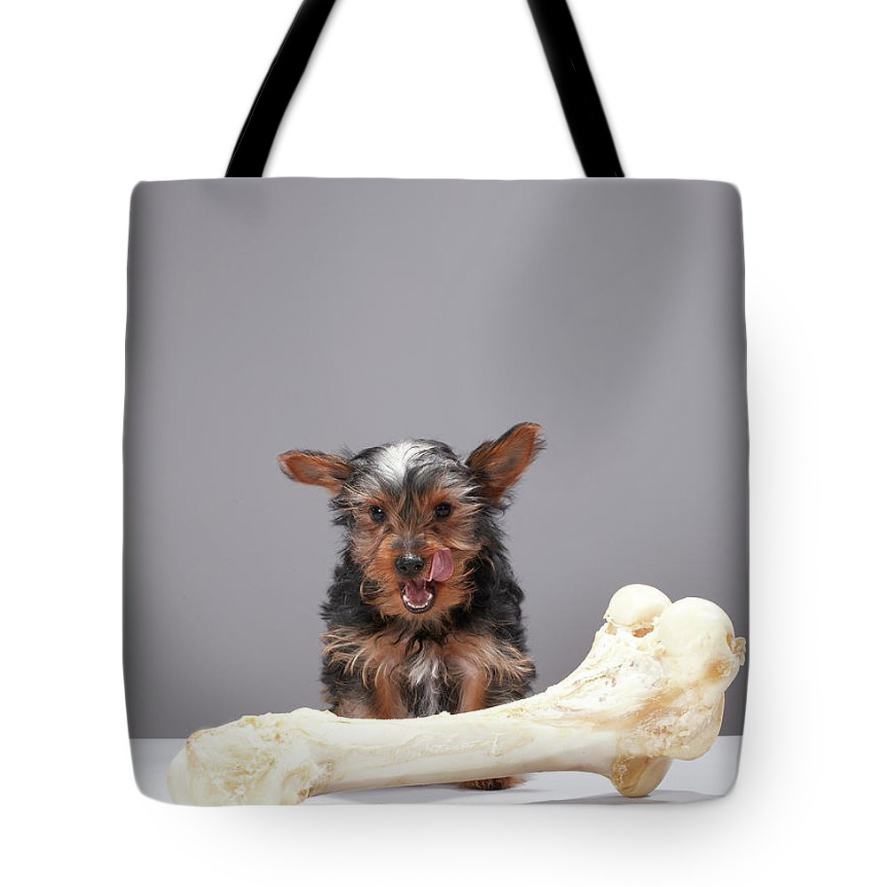 Pets Tote Bag featuring the photograph Puppy With Oversized Bone by Martin Poole