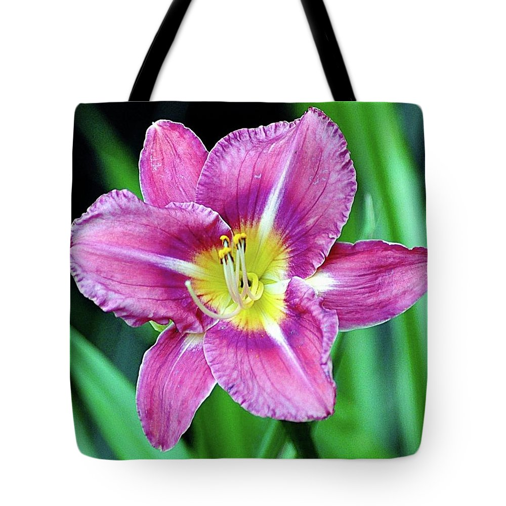 Flower Tote Bag featuring the photograph Purple And Yellow Flower by John Hughes