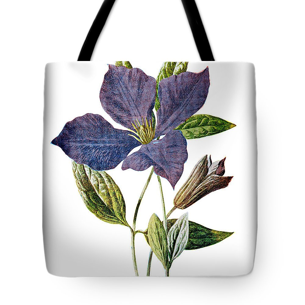 Purple Clematis Tote Bag featuring the mixed media Purple Clematis Flower by Naxart Studio