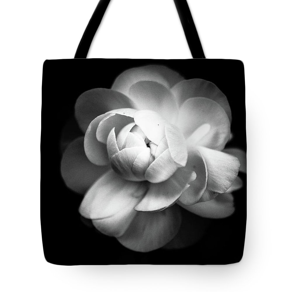 Black Background Tote Bag featuring the photograph Ranunculus Flower by Annfrau