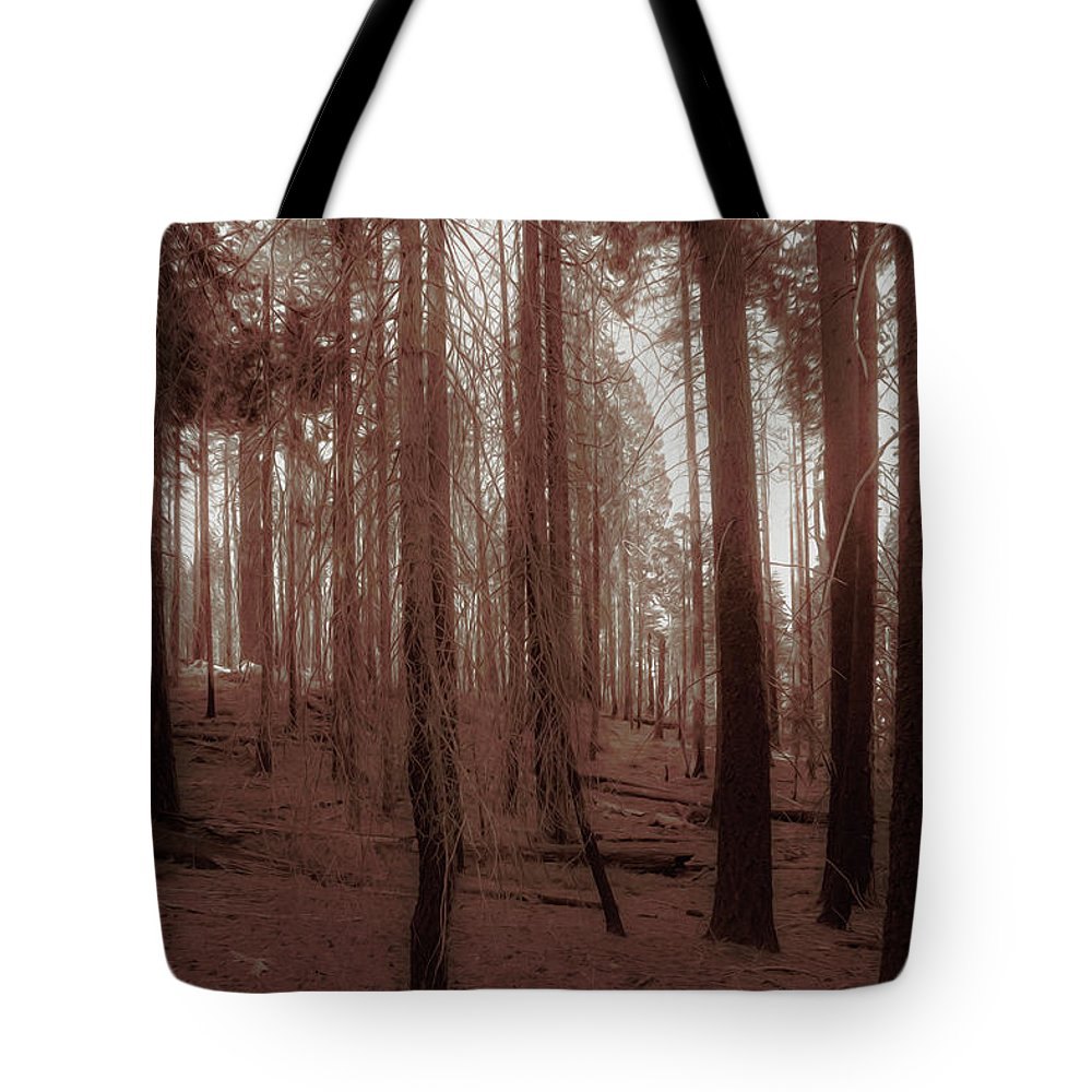 Redwood Tote Bag featuring the photograph Red Forest by Alina Avanesian