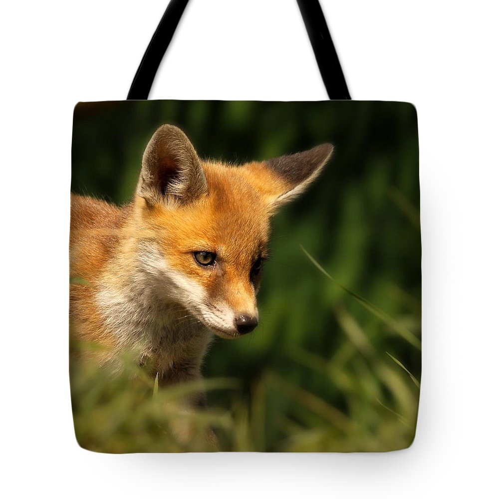 Alertness Tote Bag featuring the photograph Red Fox Cub In The Grass by Chris Jolley