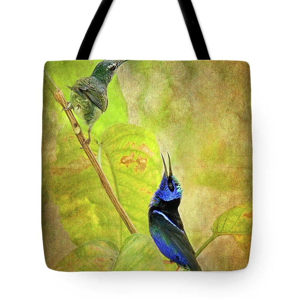 Animal Themes Tote Bag featuring the digital art Red Legged Honeycreeper Pair by Melinda Moore