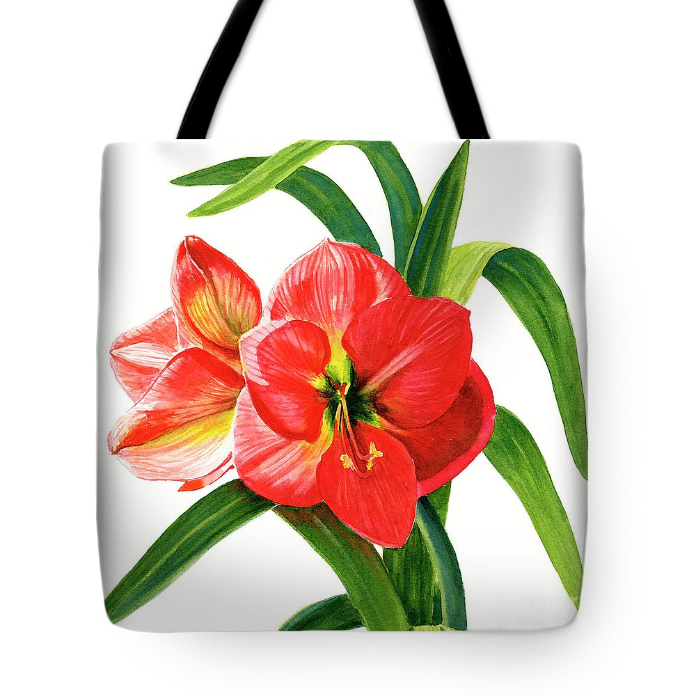 Red Tote Bag featuring the painting Red Orange Amaryllis Square Design by Sharon Freeman