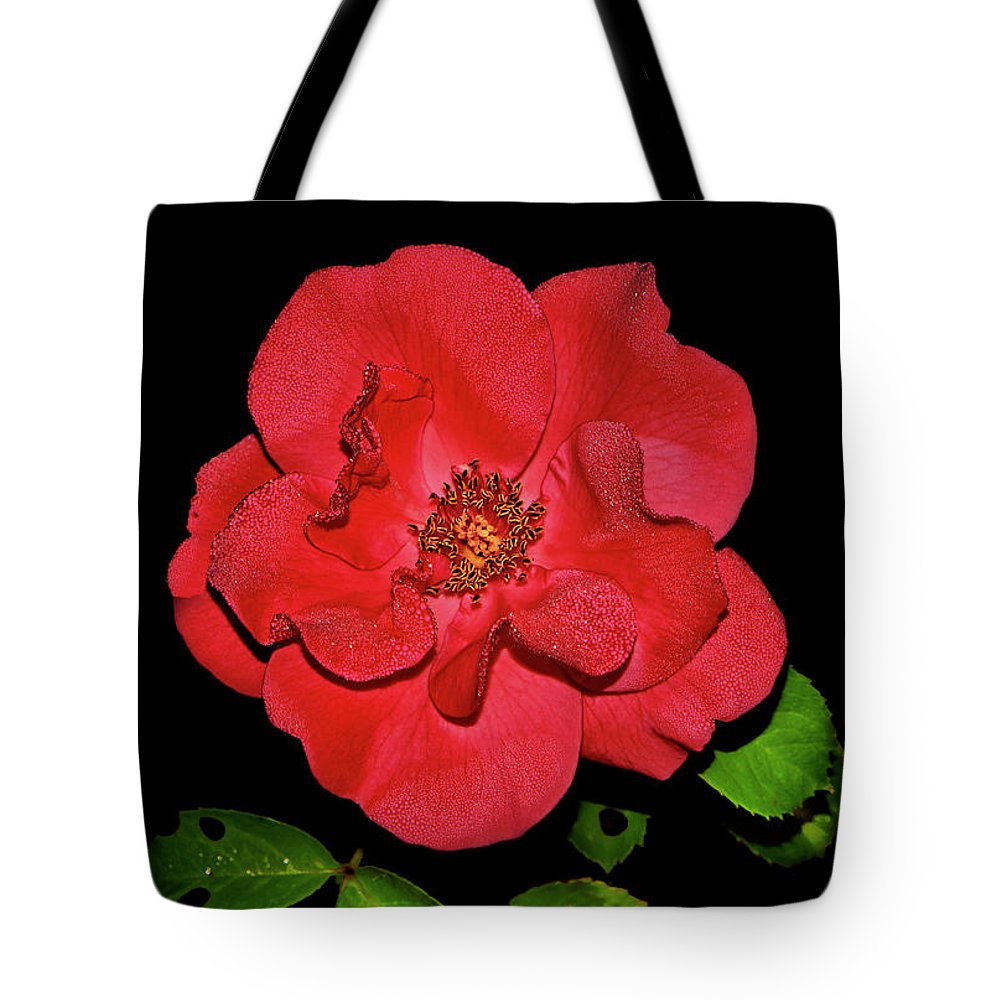 Rose Tote Bag featuring the photograph Red Rose With Dewdrops 038 by George Bostian
