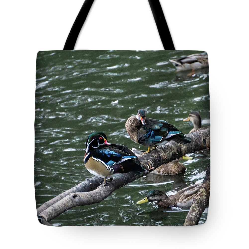 Water Birds Tote Bags