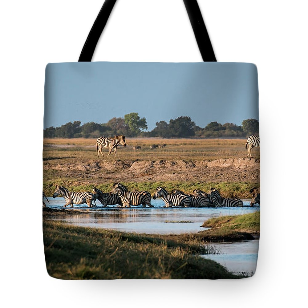 Zebra Tote Bag featuring the photograph River-crossing Zebras by Claudio Maioli