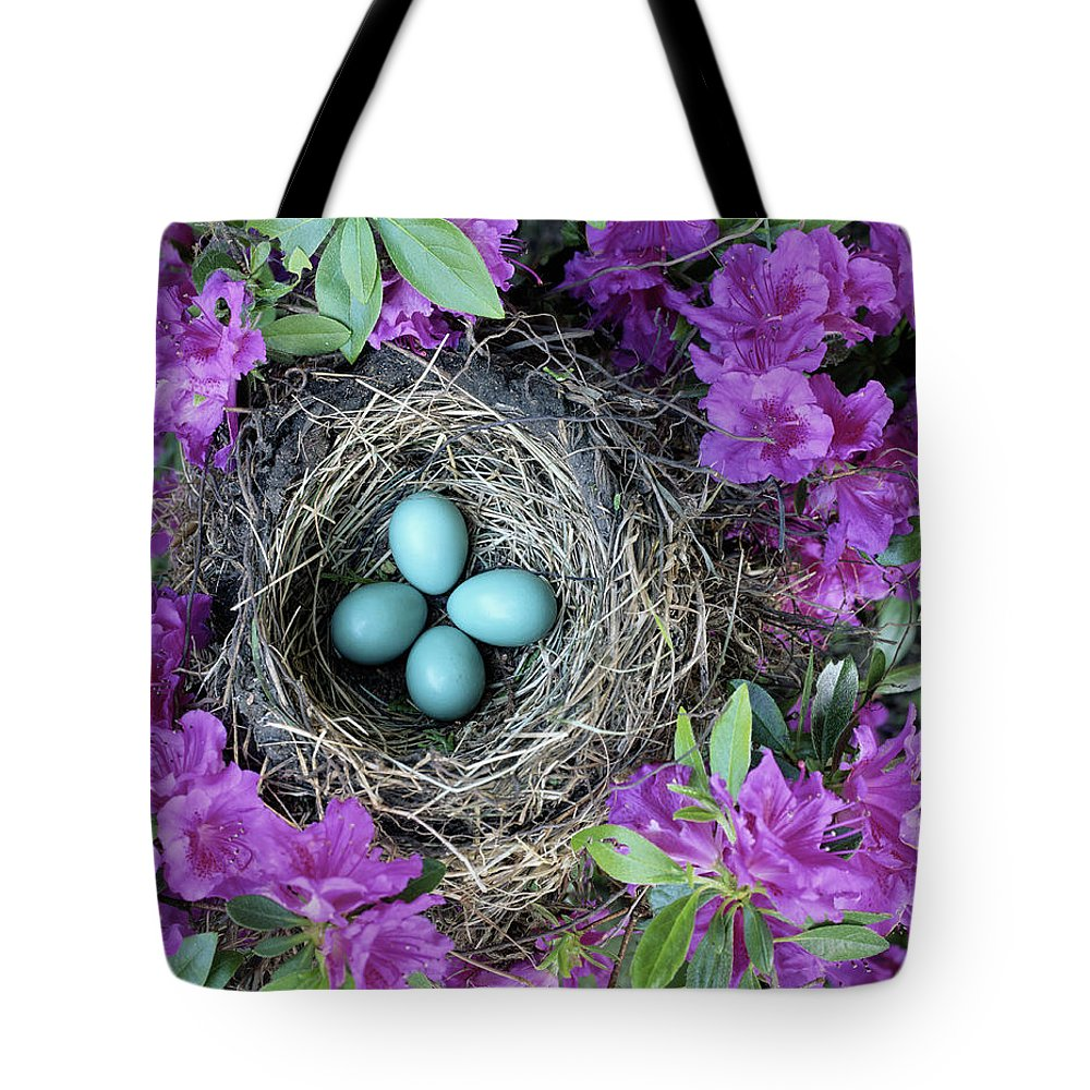 Security Tote Bag featuring the photograph Robins Nest In Azalea Bush, Spring by Art Wolfe