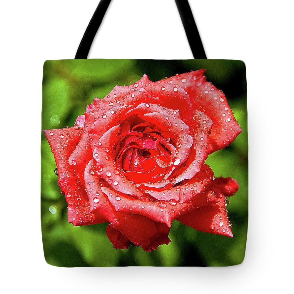 New Delhi Tote Bag featuring the photograph Rose With Raindrops by Charlie Joe