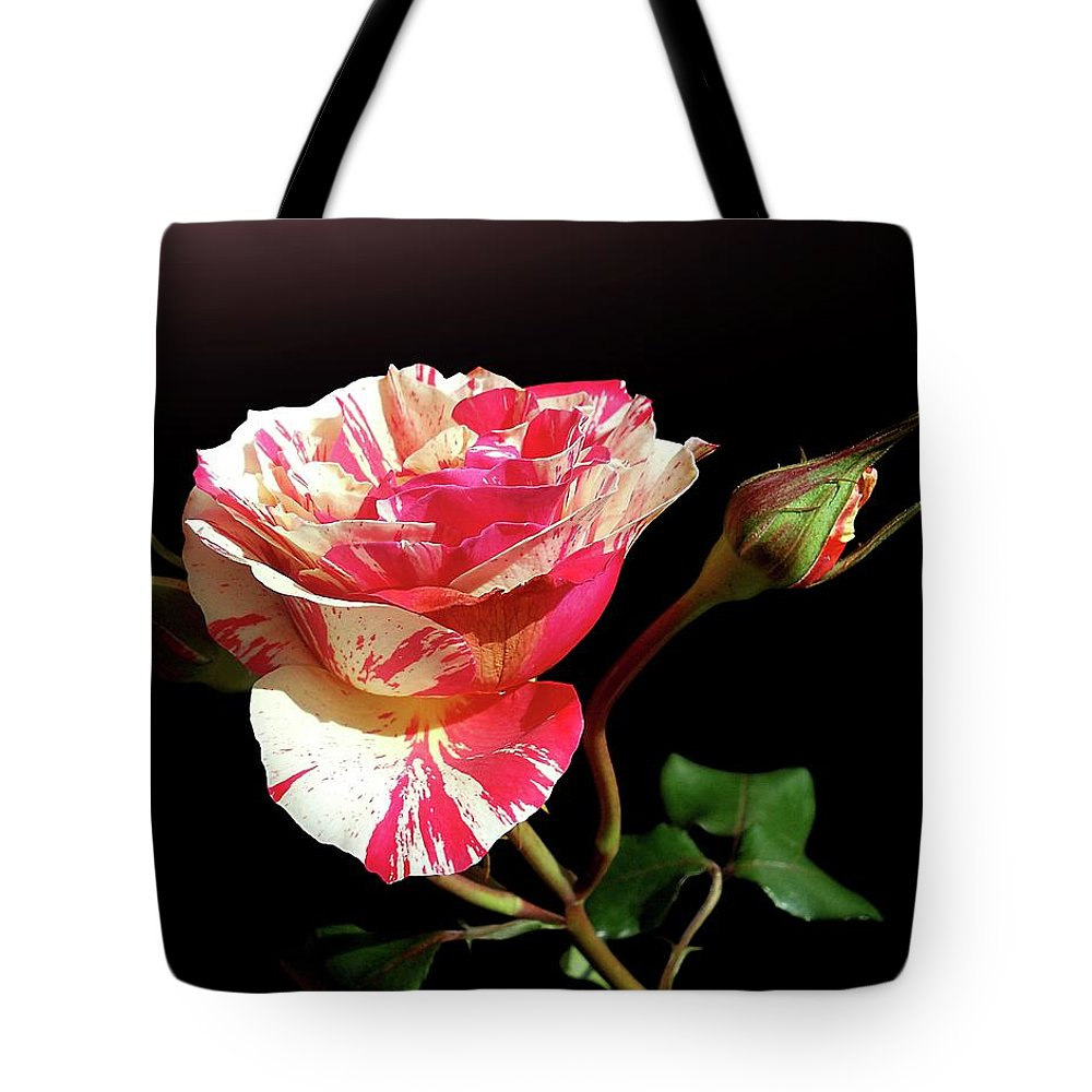 Bud Tote Bag featuring the photograph Rose With Two Buds by Gitpix