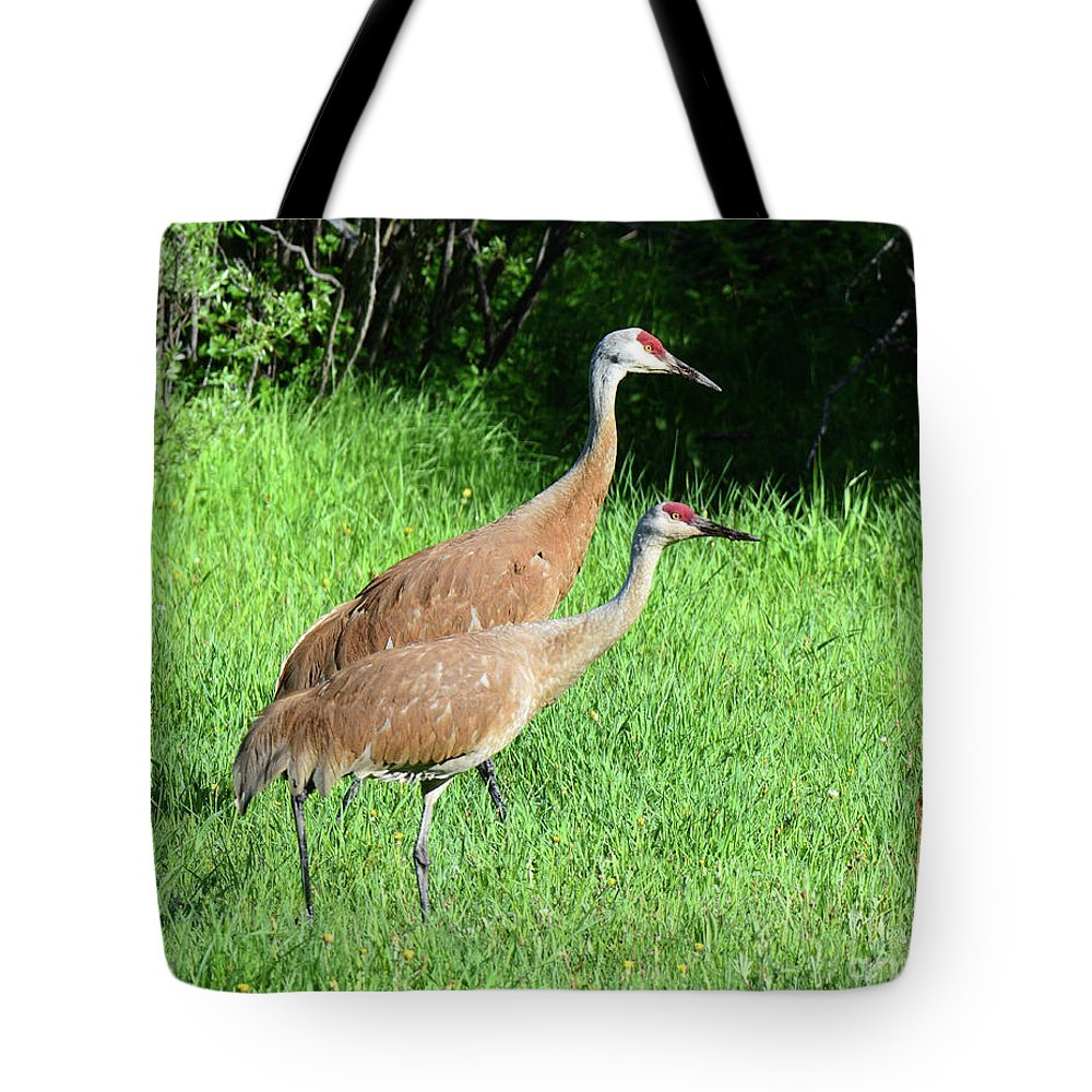 Sandhill Tote Bag featuring the photograph Sandhill Cranes by Brad Christensen