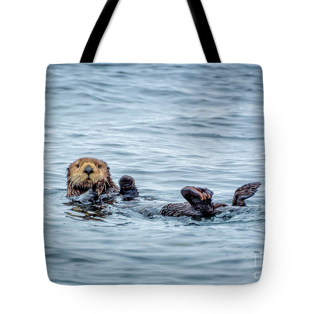 Otter Tote Bag featuring the photograph Sea Otter Naptime by Delphimages Photo Creations