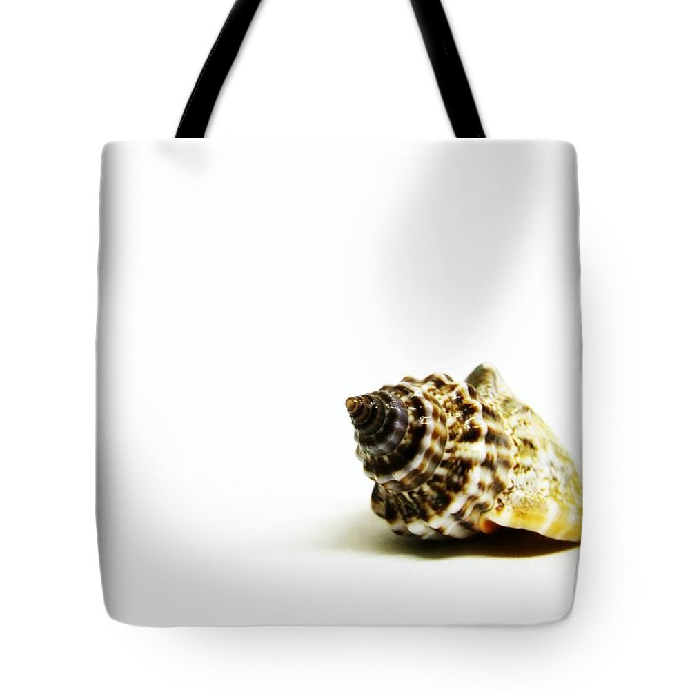 White Background Tote Bag featuring the photograph Sea Shell by Weeping Willow Photography