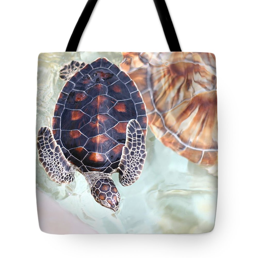 Underwater Tote Bag featuring the photograph Sea Turtle by Alyssa B. Young
