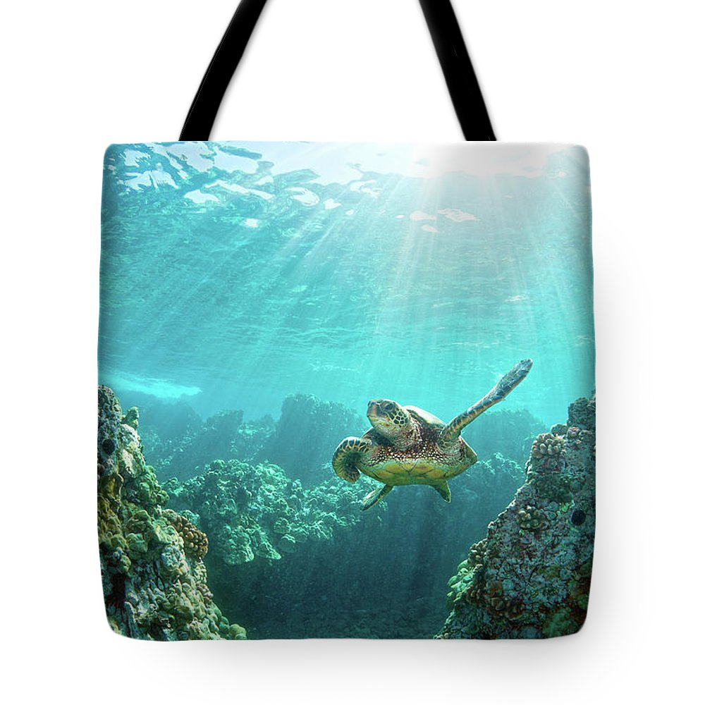 Underwater Tote Bag featuring the photograph Sea Turtle Coral Reef by M.m. Sweet
