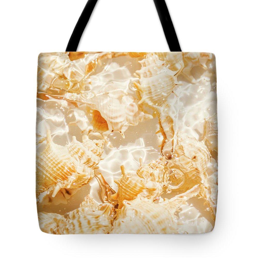 Designs Similar to Seashell Tropics