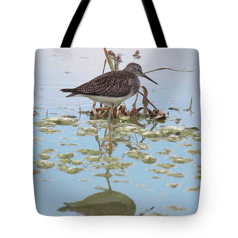Shorebird Reflection Tote Bag featuring the photograph Shorebird Reflection by Rick Veldman