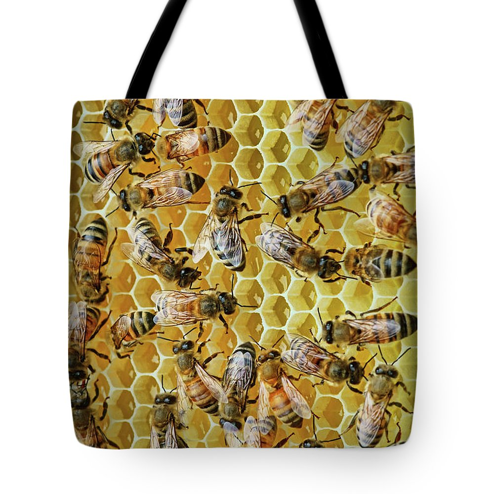 Bees Tote Bag featuring the photograph Sisters by Nikolyn McDonald