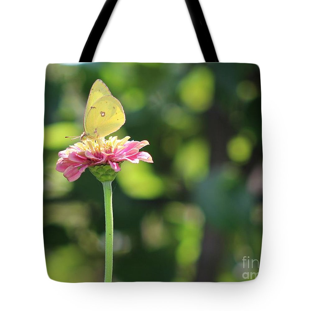 Butterfly Tote Bag featuring the photograph Sittin Pretty by Leslie Gatson-Mudd