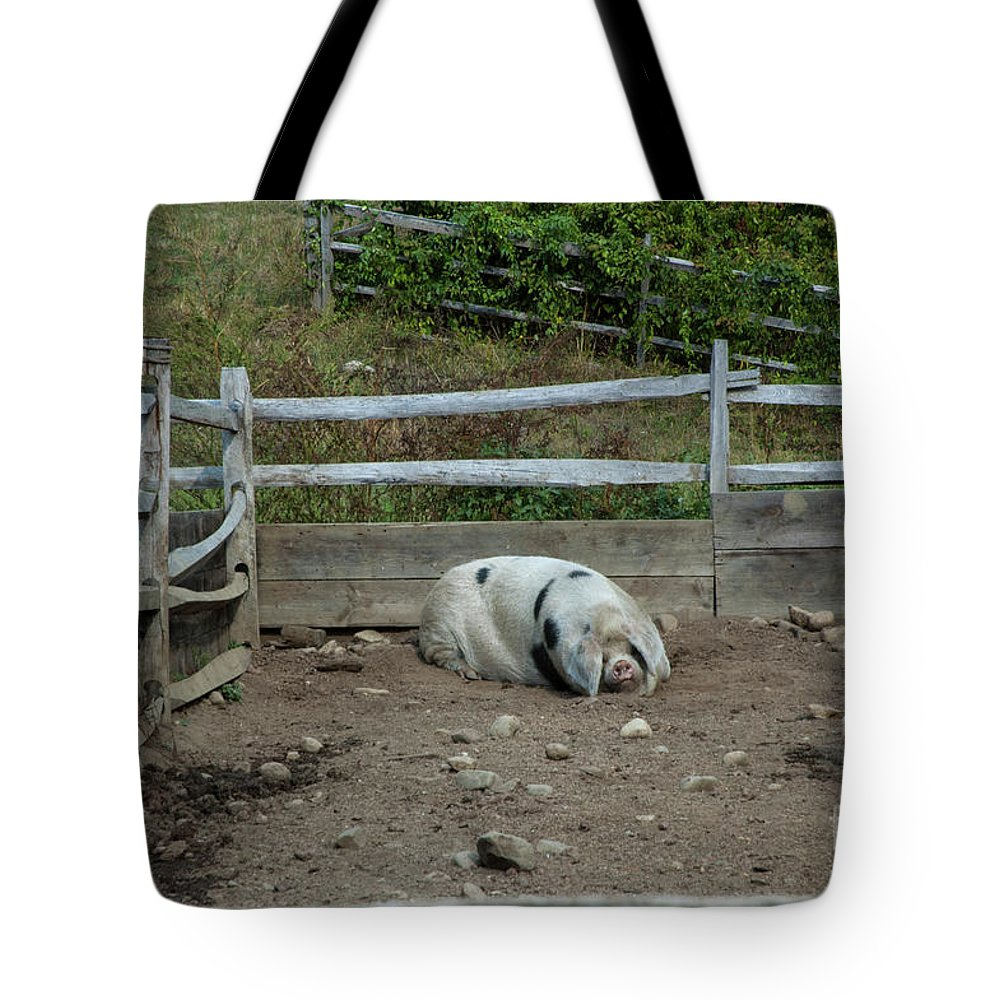 Pig Tote Bag featuring the photograph Snoozing Hog by Ruth H Curtis
