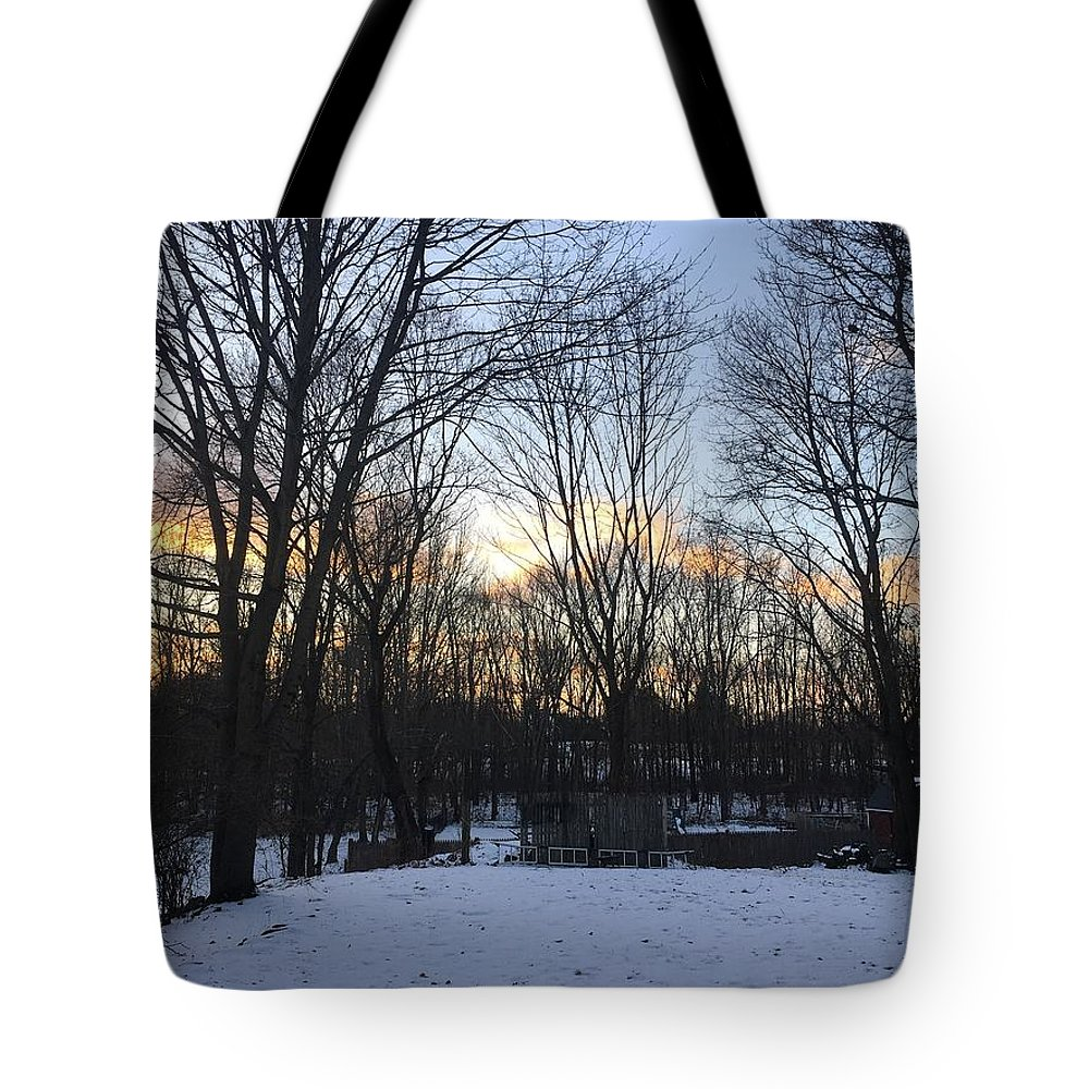 Tote Bag featuring the photograph Snow Day by Reagen Guthrie