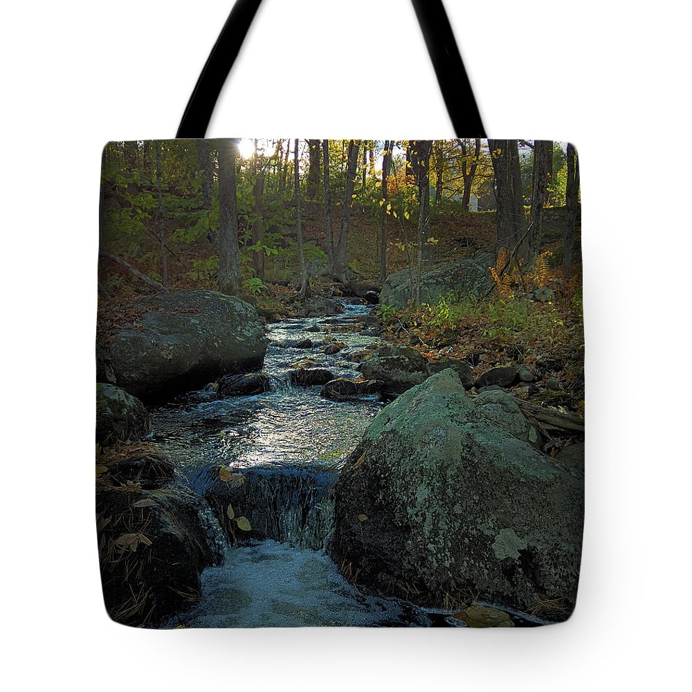 Inviting Tote Bags