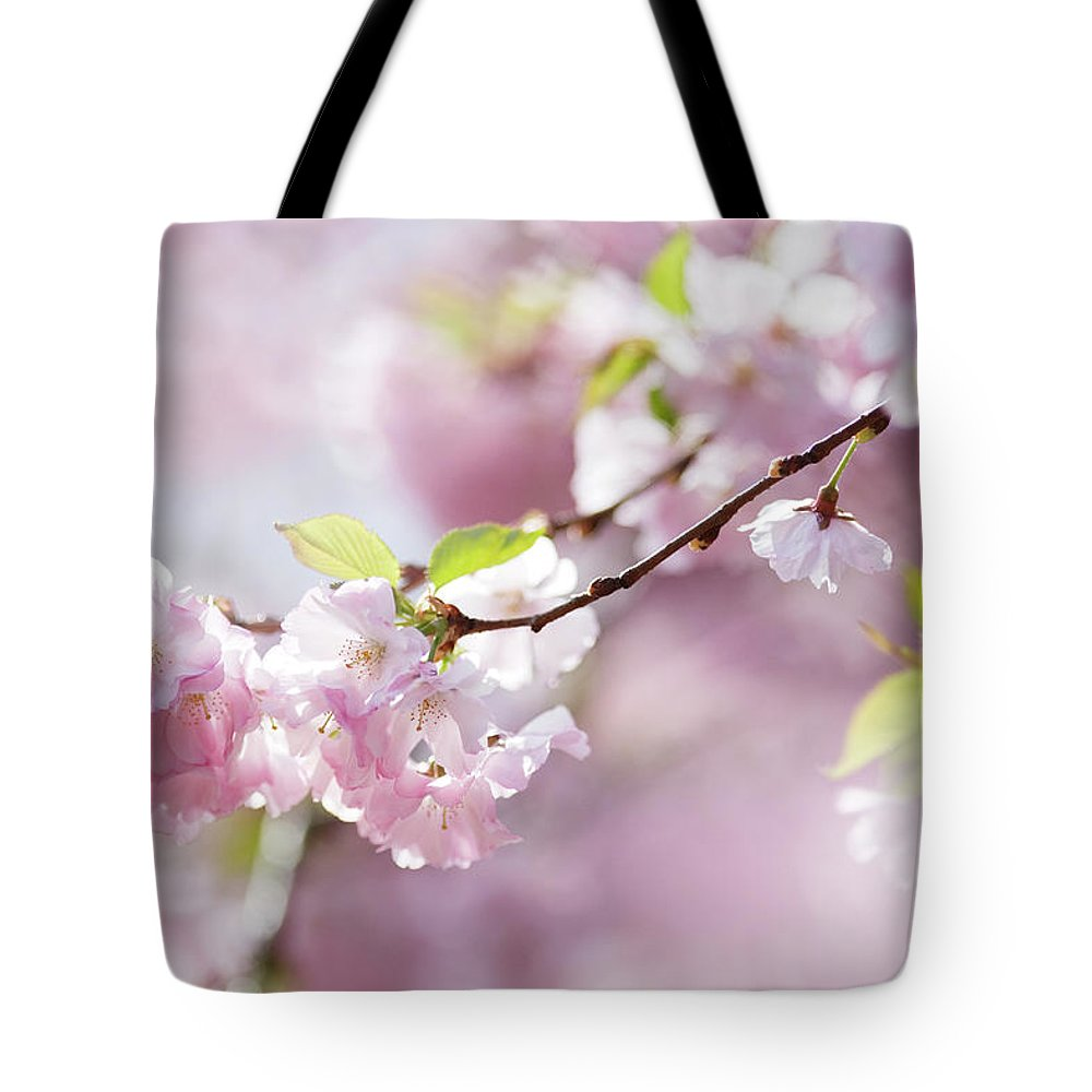 People Tote Bag featuring the photograph Spring by Goldhafen