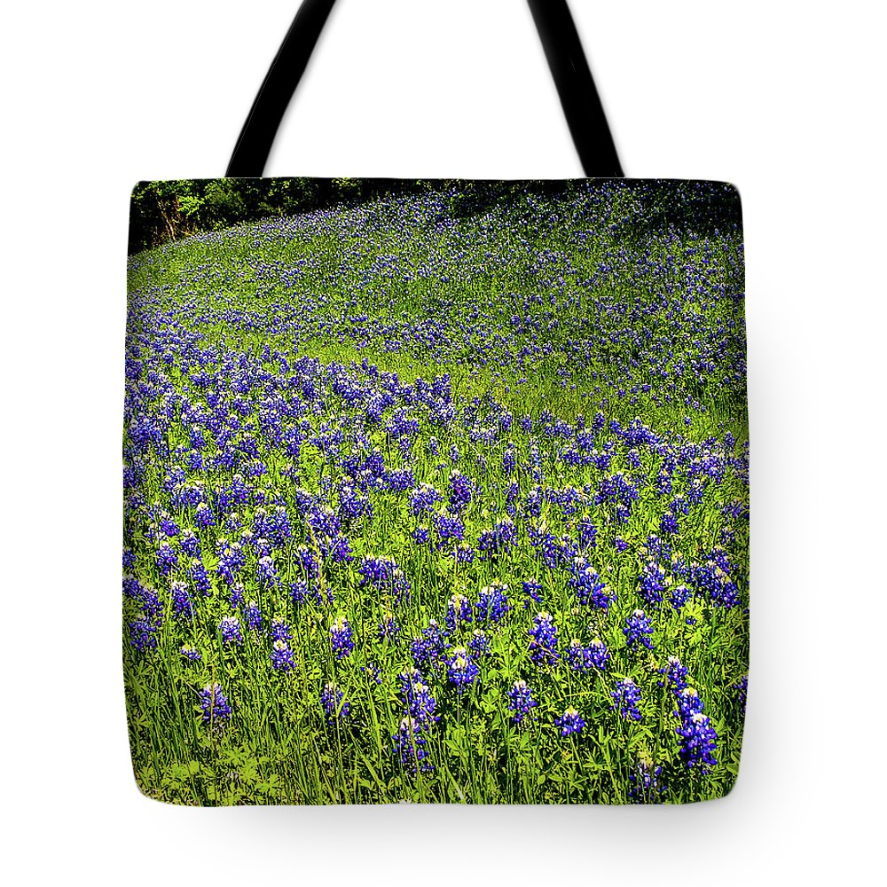 Bluebonnets Tote Bag featuring the photograph Springtime in Texas by Paul Anderson