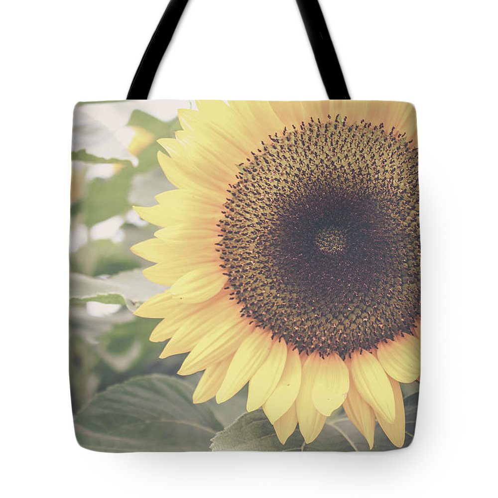 Sunflower Tote Bag featuring the photograph Sunflower Haze by Colleen Kammerer
