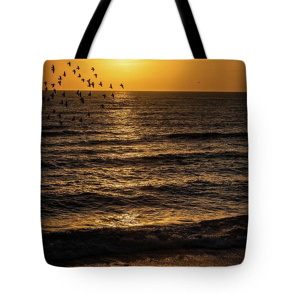Nags Head Tote Bag featuring the photograph Sunrise Birds Nc by Robert Moorhead