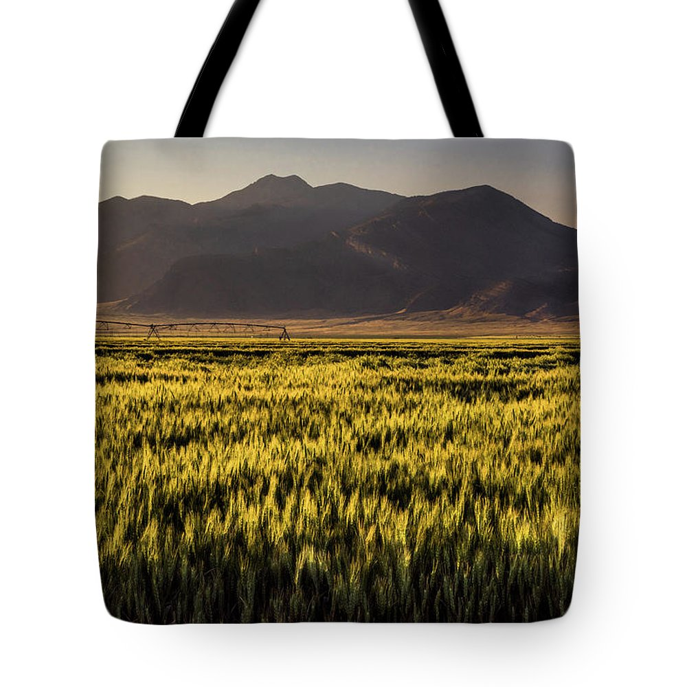 Wheat Tote Bag featuring the photograph Sunset Over Wheat by Link Jackson