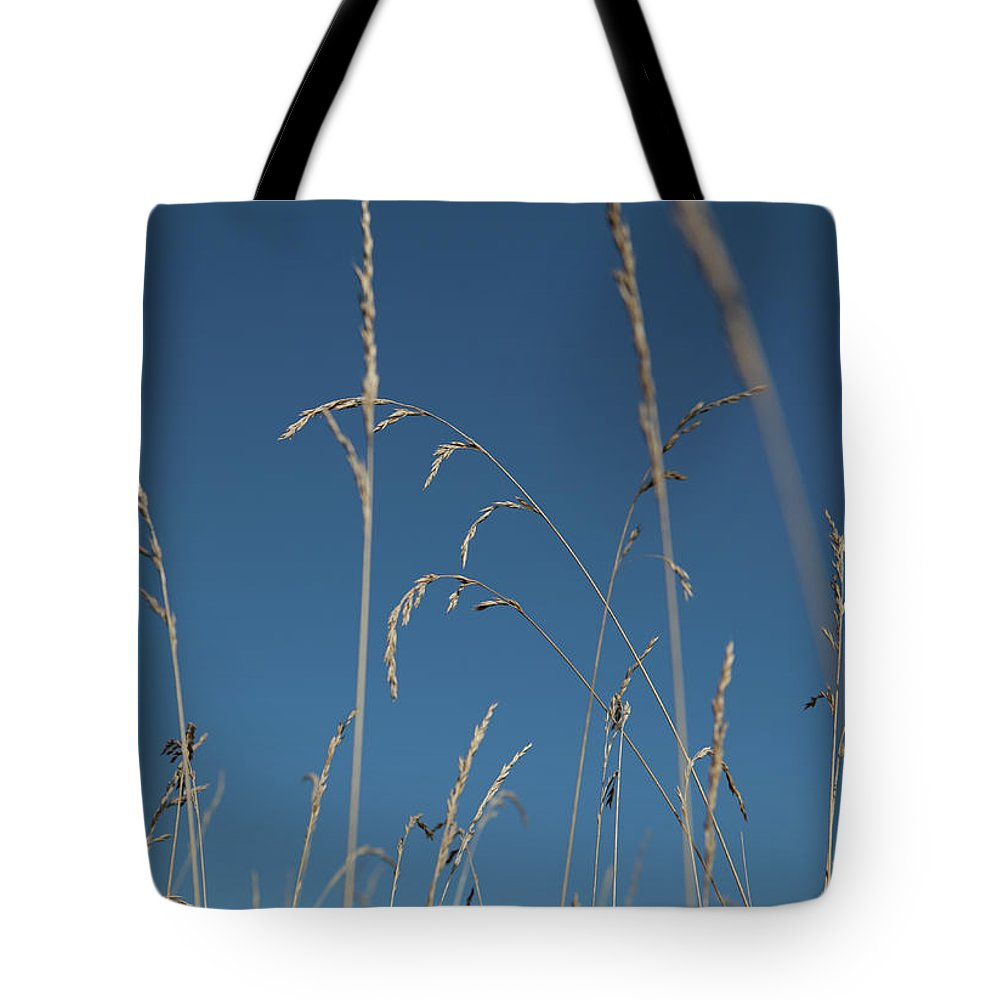 Tranquility Tote Bag featuring the photograph Tall Grasses Swaying Against A Blue Sky by Lauren Krohn