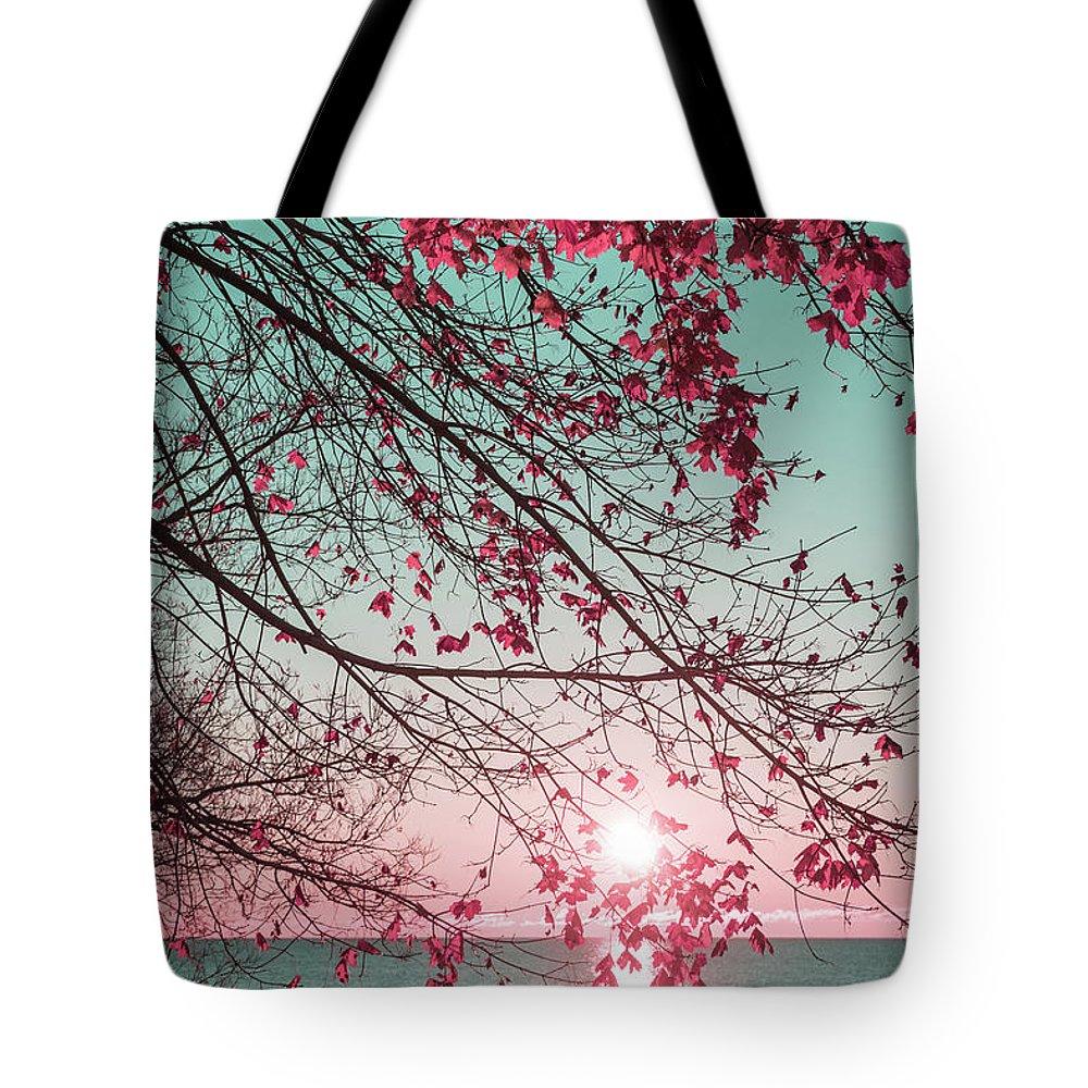 Teal And Fuchsia Tote Bag featuring the photograph Teal And Fuchsia - Autumn Sunrise Reimagined by Georgia Mizuleva