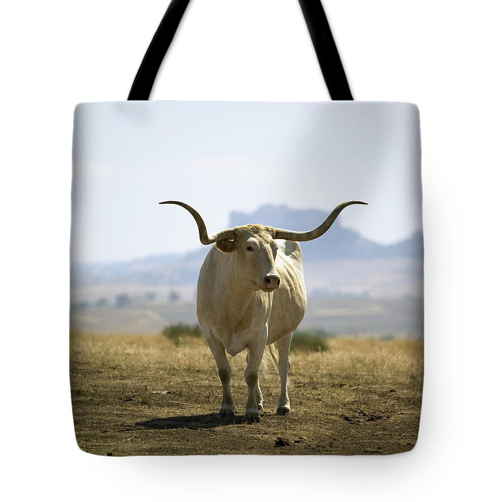Horned Tote Bag featuring the photograph Texas Longhorn by Joseph Sohm-visions Of America