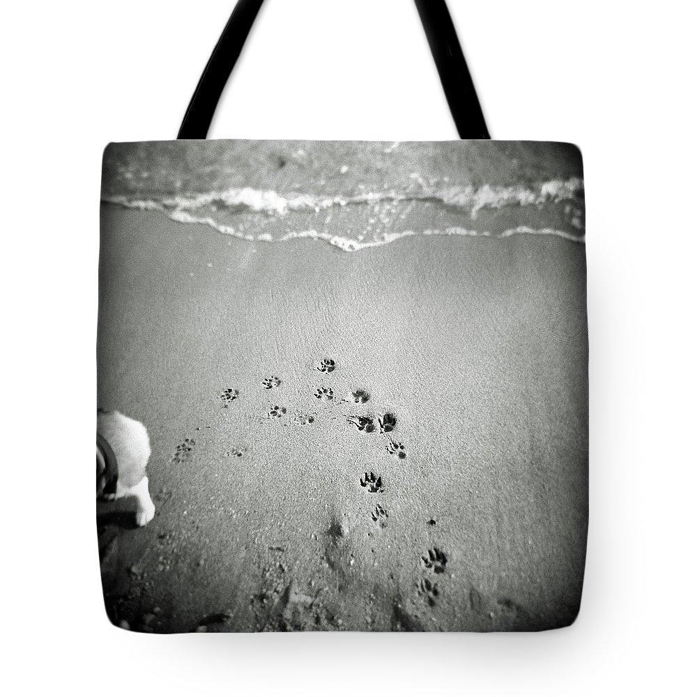 Pets Tote Bag featuring the photograph The Beach by Moaan