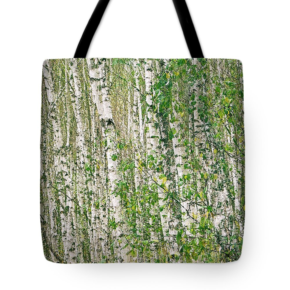 Nature Tote Bag featuring the photograph The Birch Silence. Sunychne, 2018. by Mayk's PhotoArt