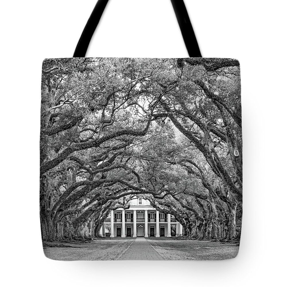 Oak Alley Plantation Tote Bag featuring the photograph The Old South Version 3 Bw by Steve Harrington