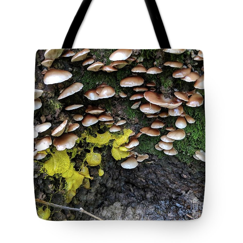 Mushrooms Tote Bag featuring the photograph The Slow Battle by Hunted Gatherings