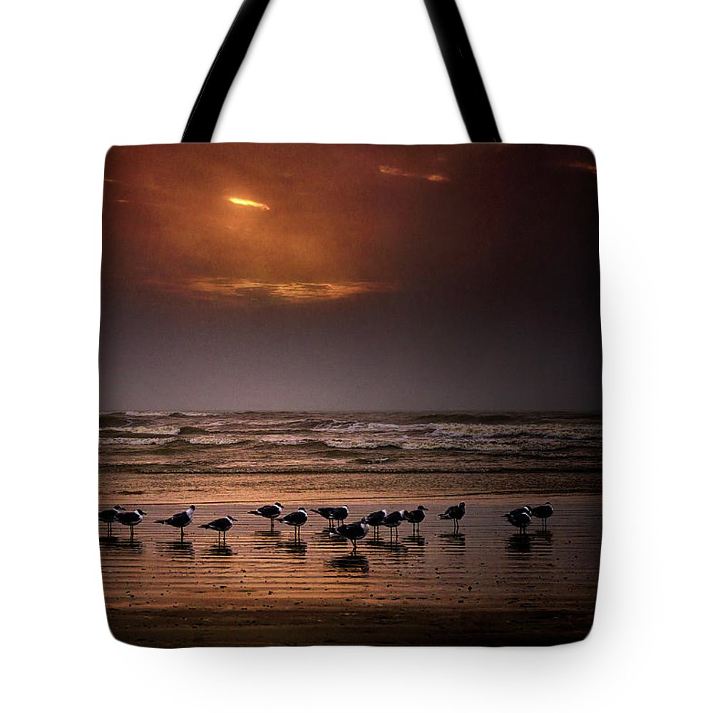 Water's Edge Tote Bag featuring the photograph Theres Gotta Be Food Around Here by Dean Fikar