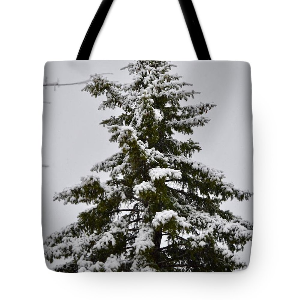 Tree Tote Bag featuring the photograph This Christmas by King Caizer