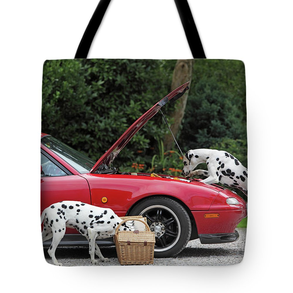 Pets Tote Bag featuring the photograph Three Dalmatians Around Red Sports Car by Peter Cade