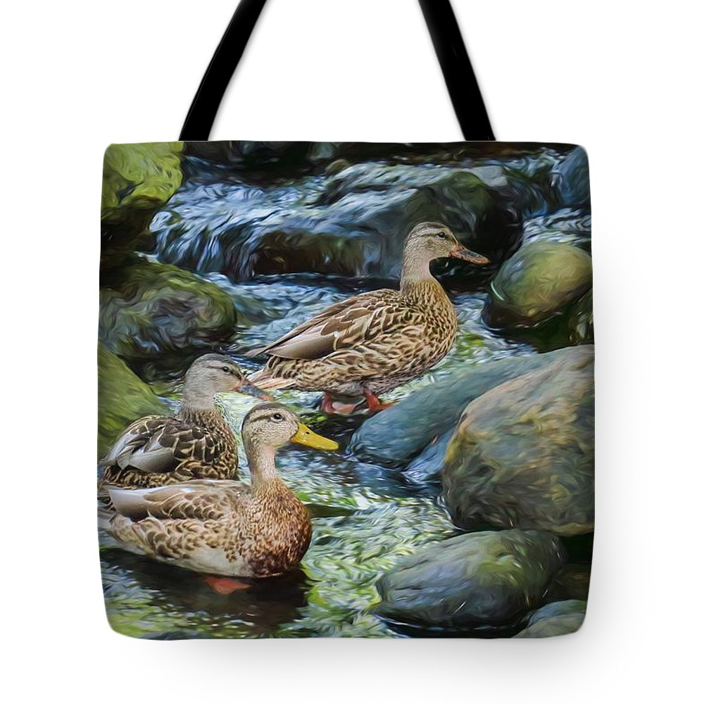 Anas Platyrhynchos Tote Bag featuring the digital art Three Mallard Ducks Swimming In A Stone Filled Brook. by Rusty R Smith