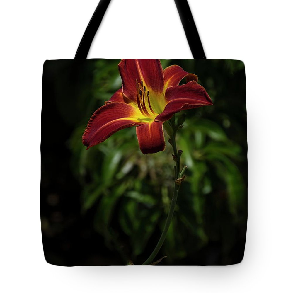 Flower Tote Bag featuring the photograph Tiger Day Lily by Alex Morales